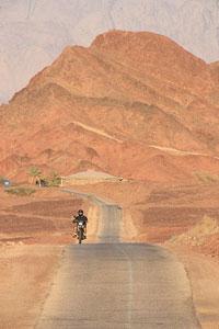Дорога в Парке Тимна